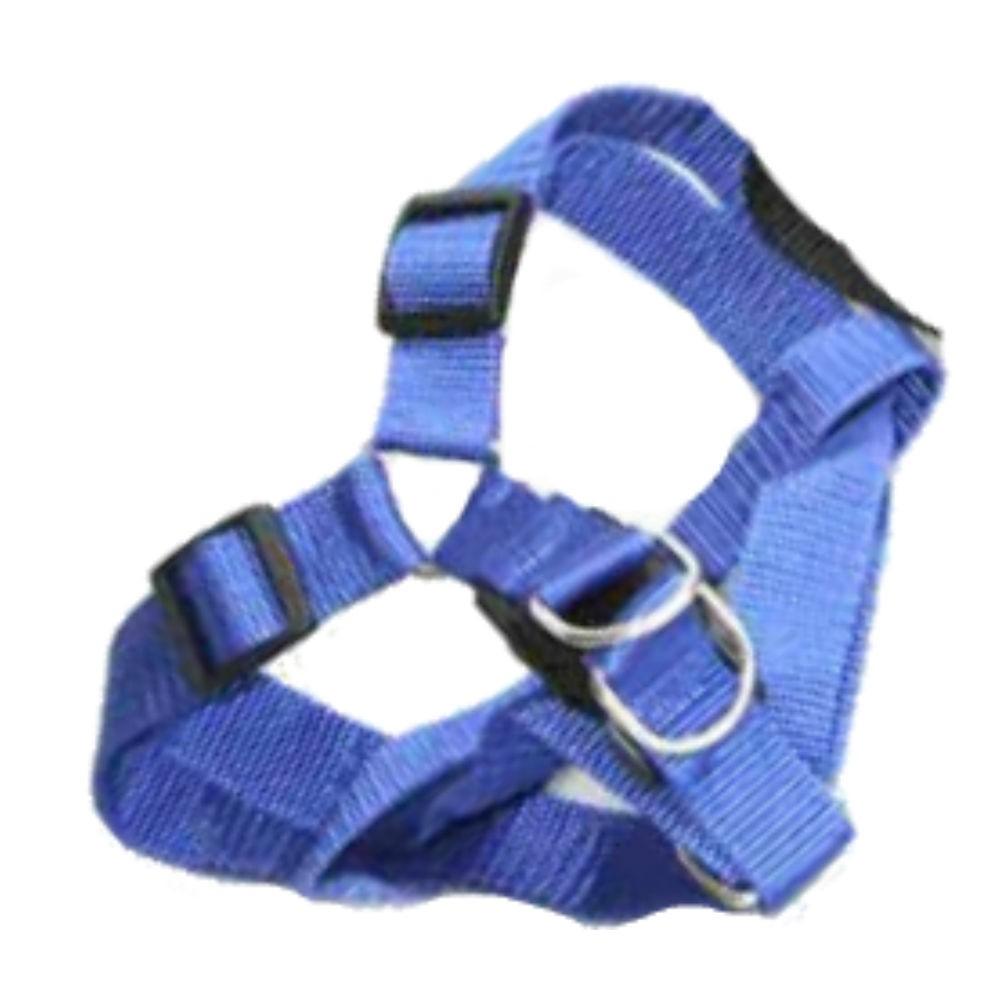 Coleira Peitoral Azul